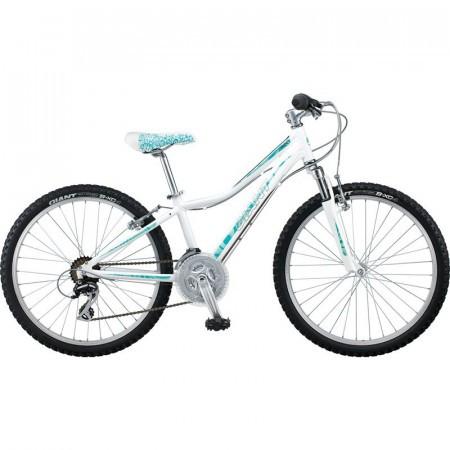 Bicicleta Giant Areva 1 24