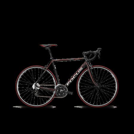 Bicicleta FOCUS CULEBRO 4.0 TRP