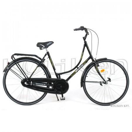 Bicicleta Koliken Holland