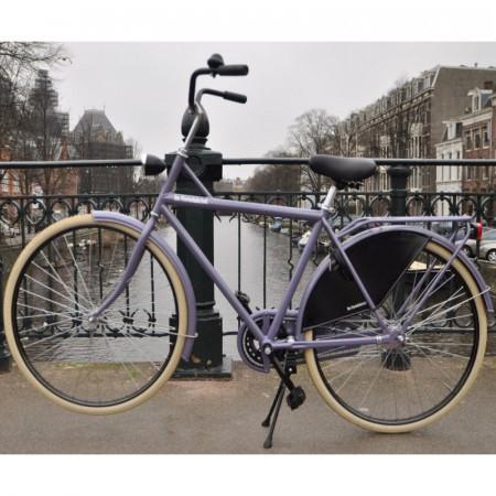 Bicicleta verde Fietsfabriek ATY