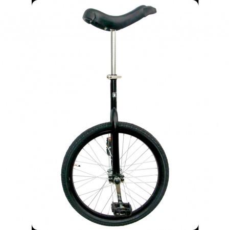 Monociclu de oras (Unicycle)