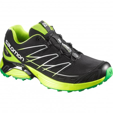 Salomon Wings Flyte GTX M Negru