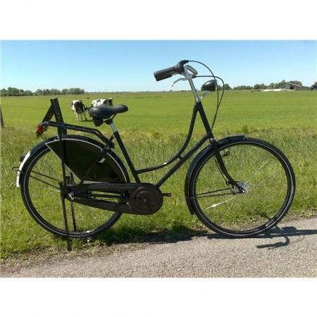 Bicicleta Van Gogh Paris cu butuc Sturmey Archer