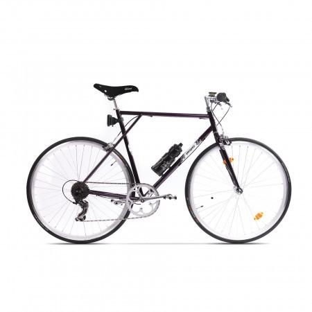 Bicicleta de oras pentru barbati Pegas Clasic Mov Vanata